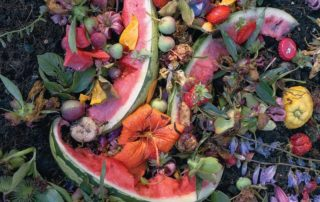 By Popular Demand: The Art of Composting